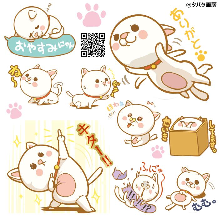 おネコ_告知画像2